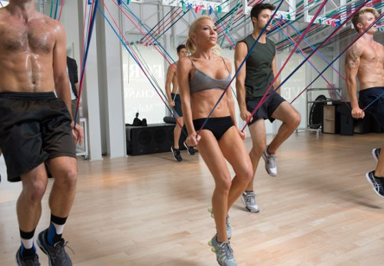tracy-anderson-suspension-cords-hss